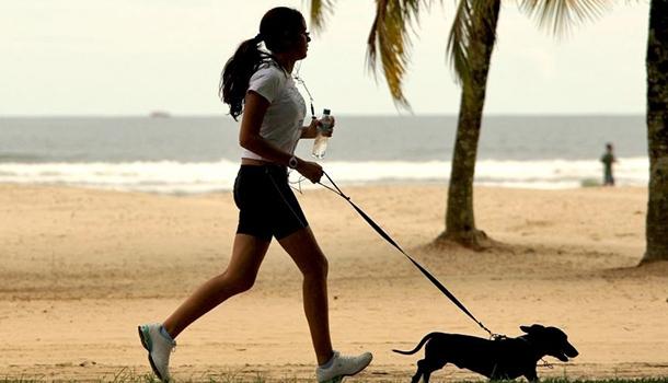 estimula exercício