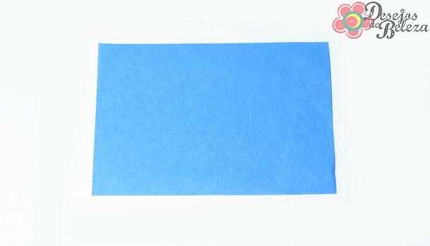 lenço-removedor-de-oleosidade-ricca-3