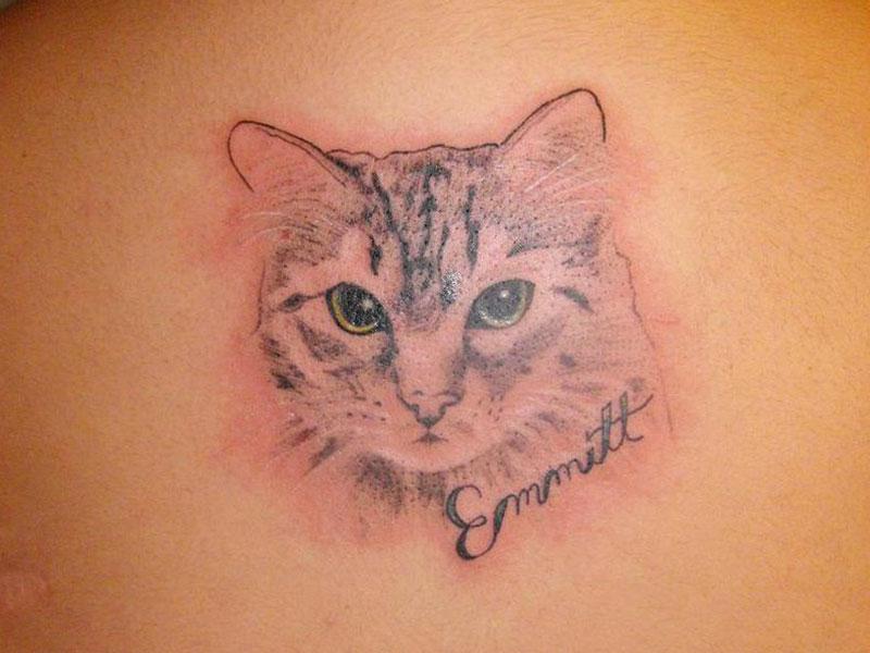 tatuagem-de-gatos-14