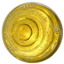 shampoo-transparente-2